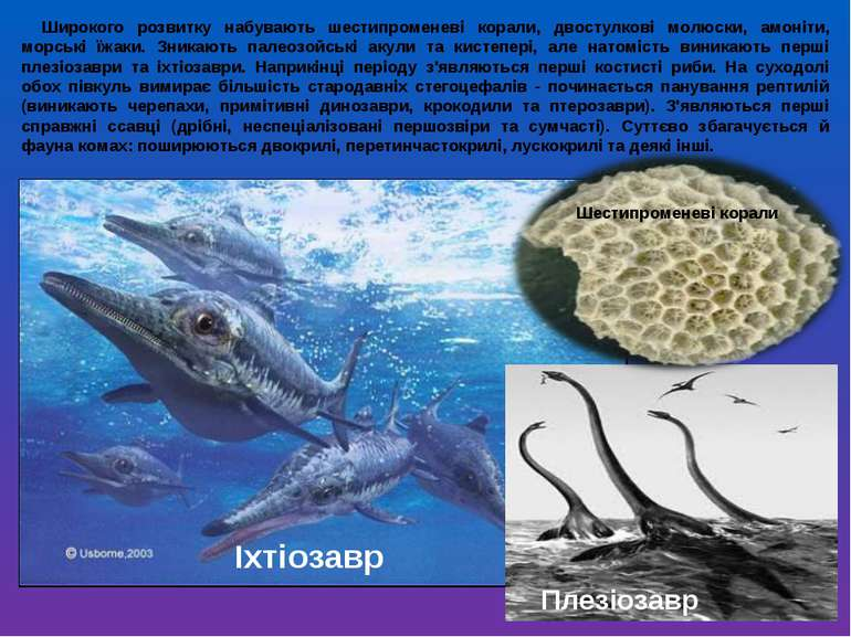 Широкого розвитку набувають шестипроменеві корали, двостулкові молюски, амоні...