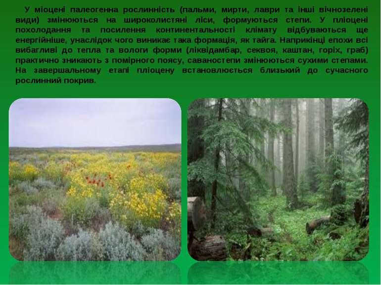 У міоцені палеогенна рослинність (пальми, мирти, лаври та інші вічнозелені ви...