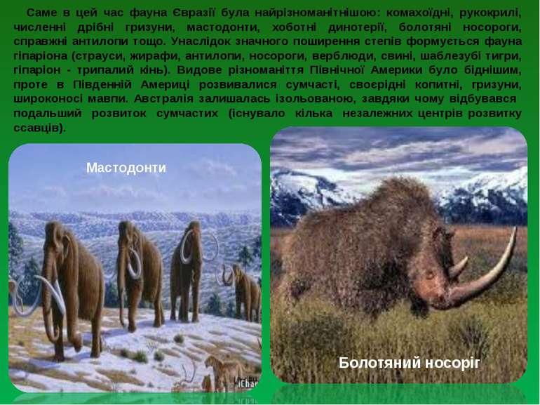 Саме в цей час фауна Євразії була найрізноманітнішою: комахоїдні, рукокрилі, ...