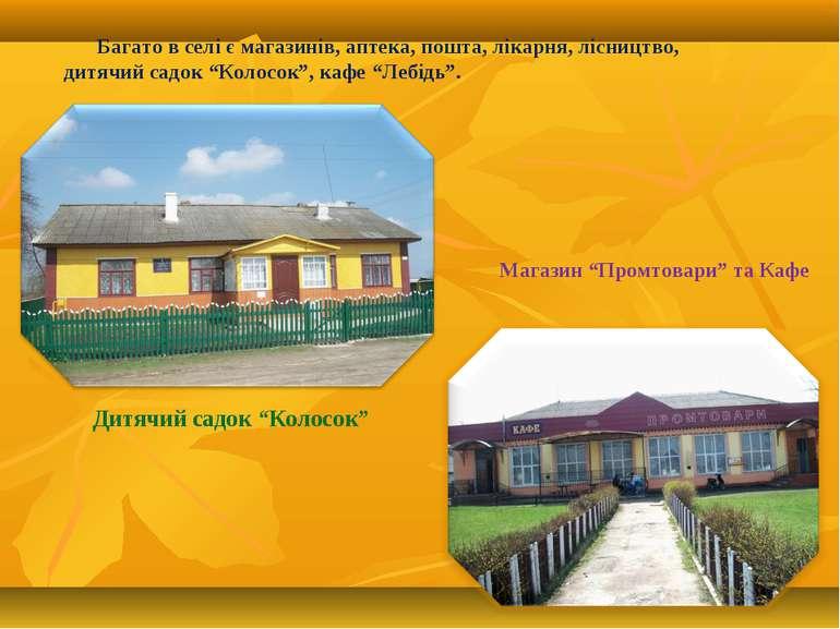 """Багато в селі є магазинів, аптека, пошта, лікарня, лісництво, дитячий садок """"..."""