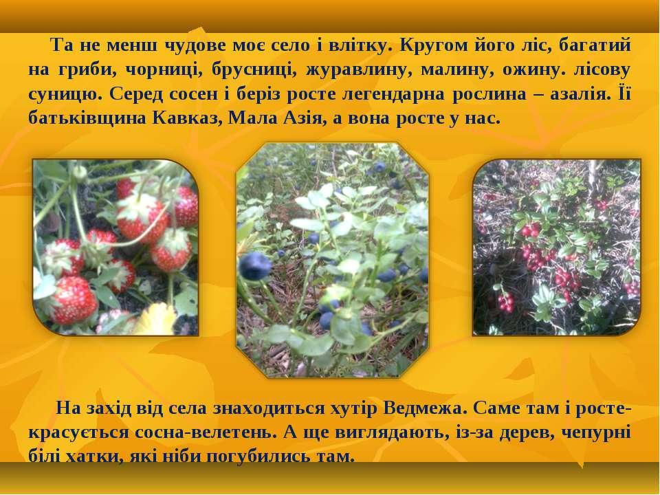 Та не менш чудове моє село і влітку. Кругом його ліс, багатий на гриби, чорни...