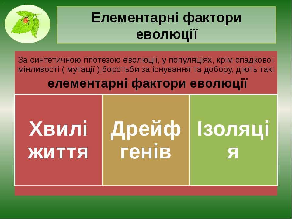 Елементарні фактори еволюції