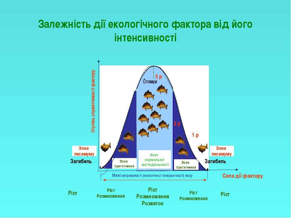 Залежність дії екологічного фактора від його інтенсивності Зона нормальної жи...
