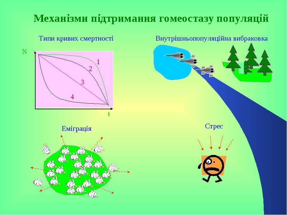 N t Типи кривих смертності Механізми підтримання гомеостазу популяцій Еміграц...