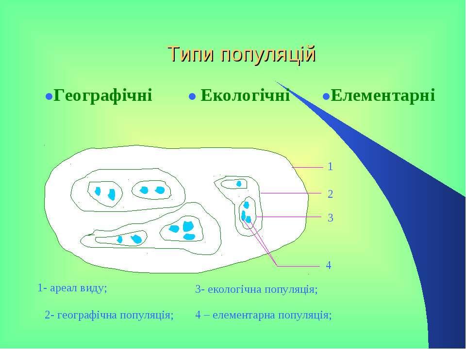 Типи популяцій ●Географічні ● Екологічні ●Елементарні 1 2 3 4 1 1- ареал виду...
