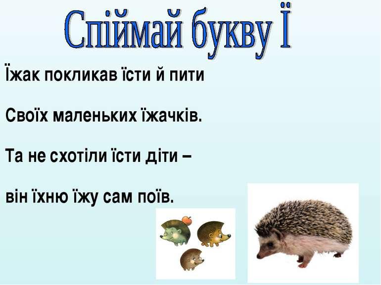 Їжак покликав їсти й пити Своїх маленьких їжачків. Та не схотіли їсти діти – ...