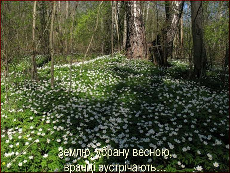 землю, убрану весною, вранці зустрічають…