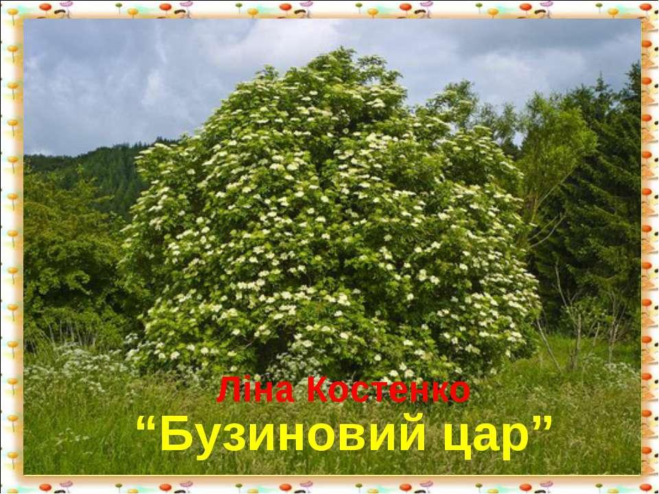 """Ліна Костенко """"Бузиновий цар"""" http://aida.ucoz.ru"""
