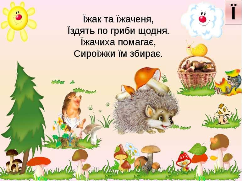 Їжак та їжаченя, Їздять по гриби щодня. Їжачиха помагає, Сироїжки їм збирає. Ї