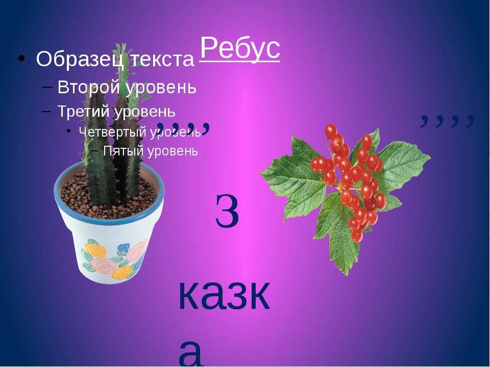 Ребус , , , , , , , , З казка