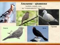 """* * Хвилинка – цікавинка Знайдіть у вірші слова, що """"супроводжують"""" цих птахі..."""