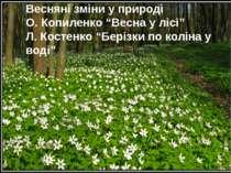 """Весняні зміни у природі О. Копиленко """"Весна у лісі"""" Л. Костенко """"Берізки по к..."""