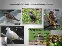 Назвати птахів по порядку, які вчилися будувати гнізда Дрізд Сова Шпак Горобе...