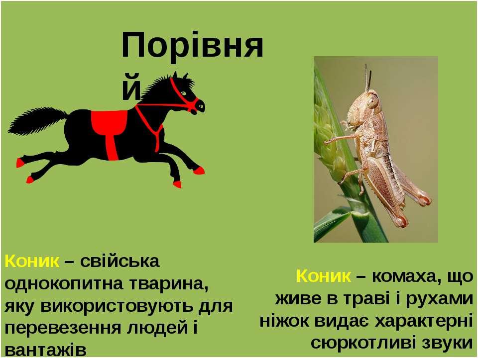 Порівняй Коник – свійська однокопитна тварина, яку використовують для перевез...