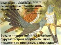 Зозуля –перелітній птах із світло- чи бурувато-сірим оперенням, який пташенят...