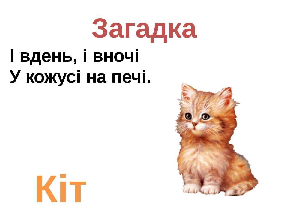 Загадка І вдень, і вночі У кожусі на печі. Кіт