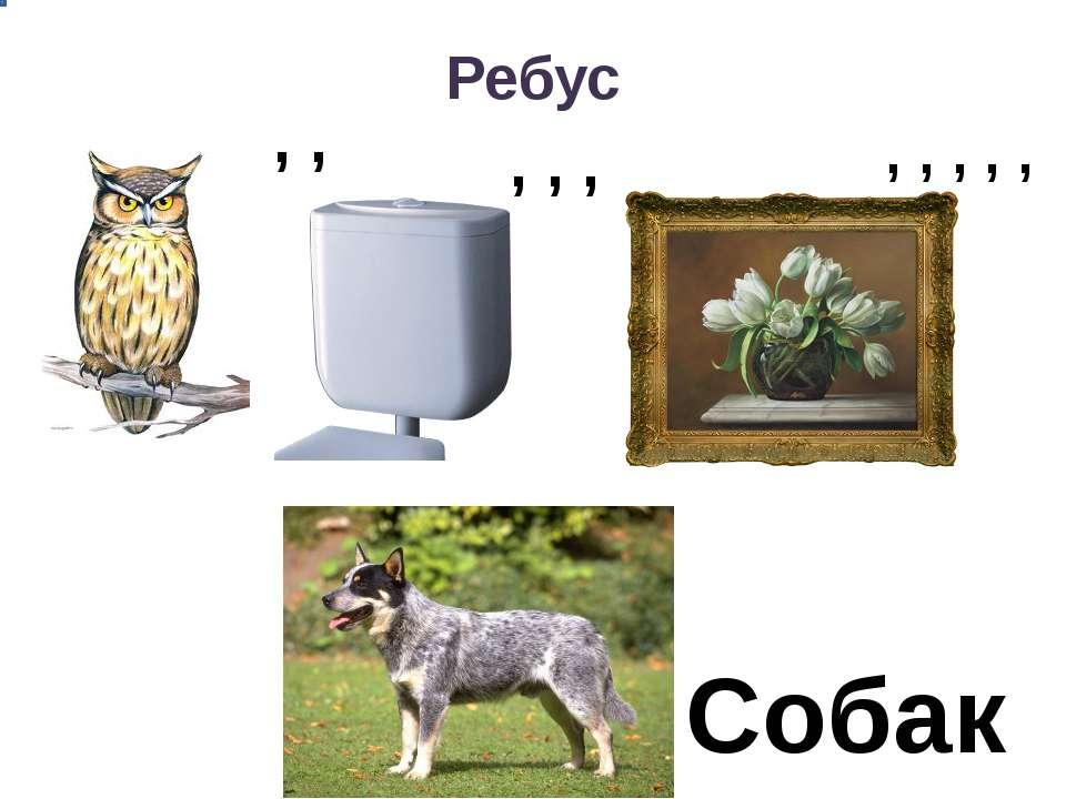 картинка ребус щенок содержит