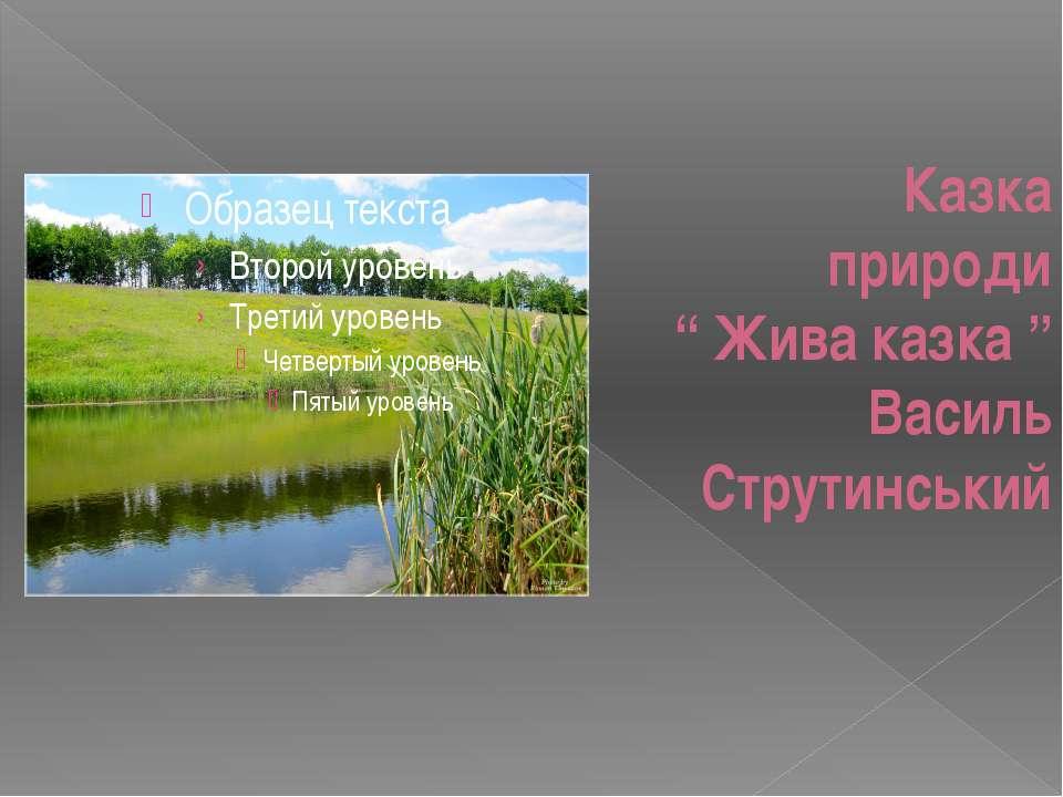 """Казка природи """" Жива казка """" Василь Струтинський"""