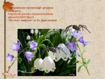 Оформлення презентації: ресурси Інтернету. http://fotki.yandex.ru/users/svetl...