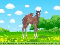 Тепер кінь жалкував, що даремно нарікав на свою долю і вроду, та будо вже пізно.