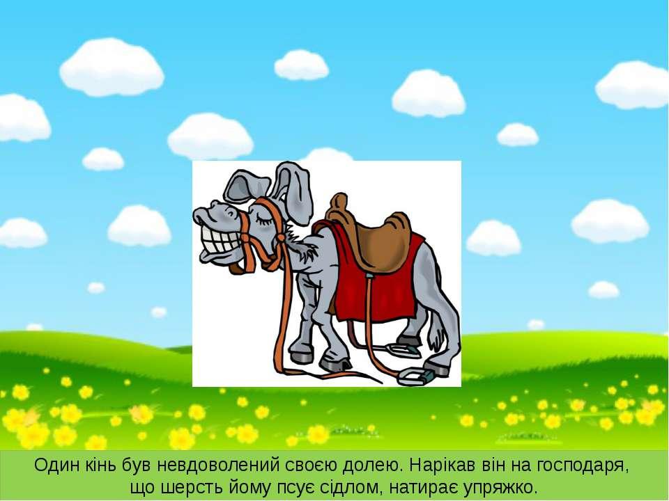 Один кінь був невдоволений своєю долею. Нарікав він на господаря, що шерсть й...