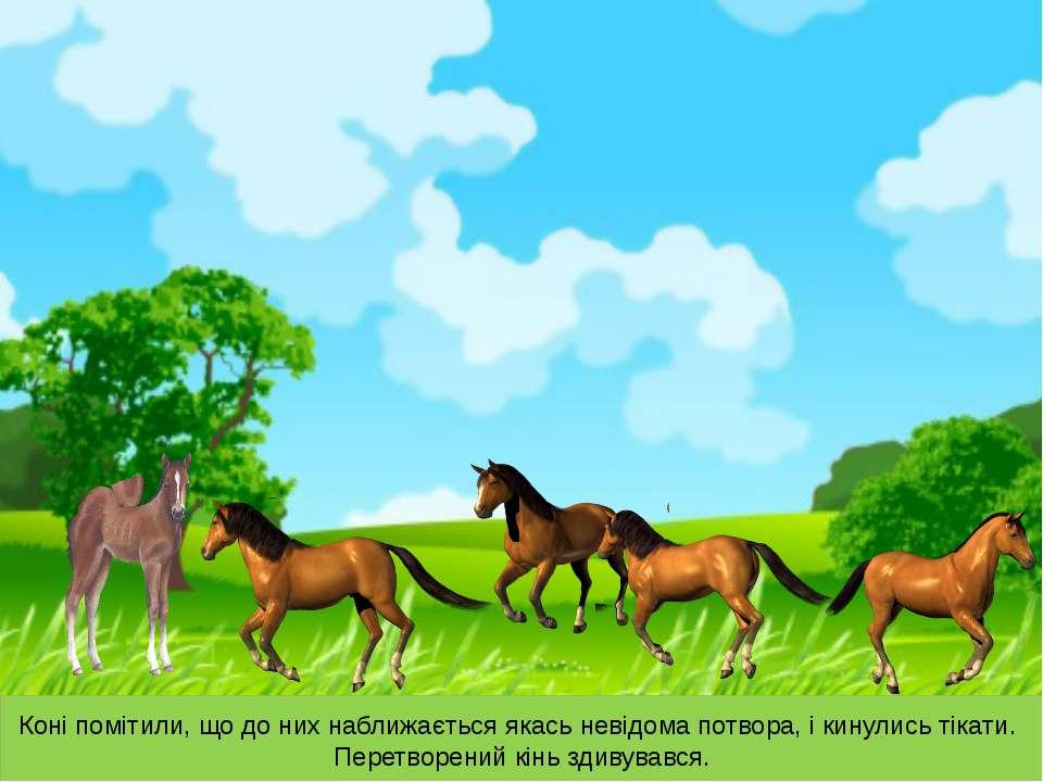 Коні помітили, що до них наближається якась невідома потвора, і кинулись тіка...