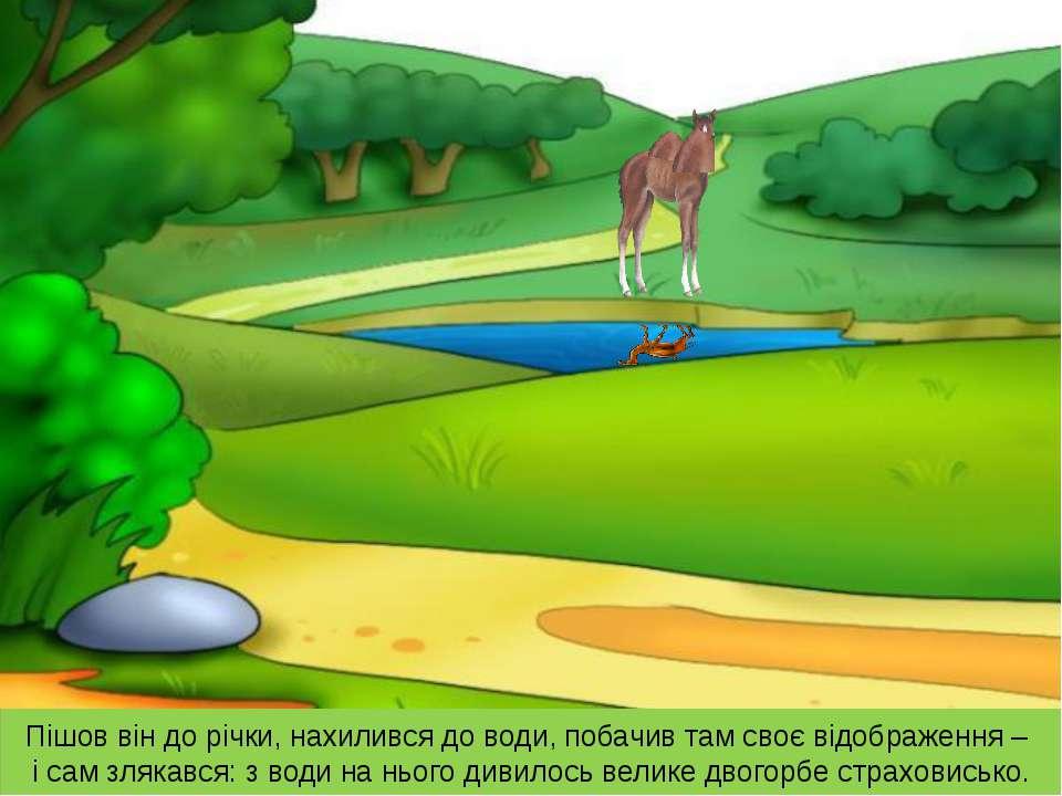 Пішов він до річки, нахилився до води, побачив там своє відображення – і сам ...