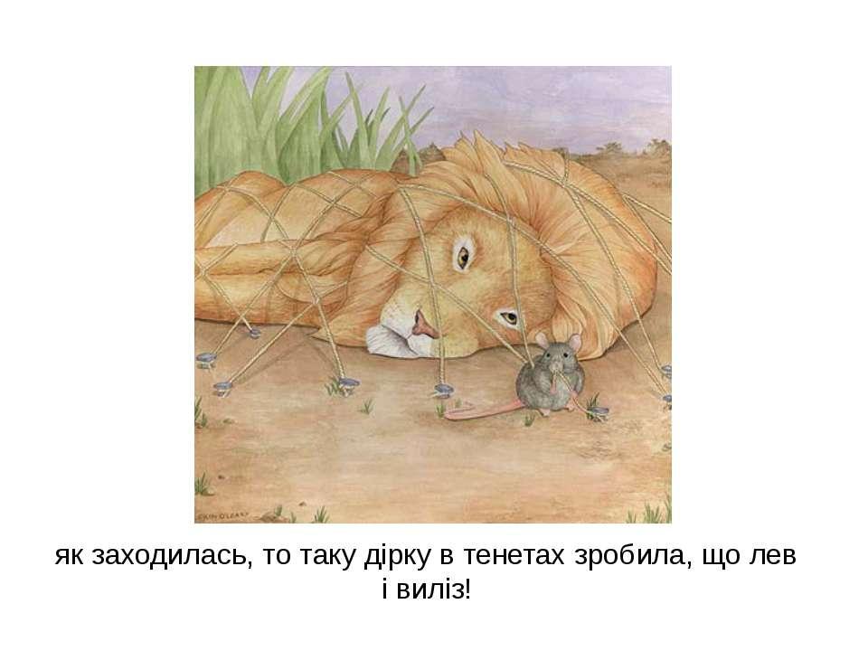 як заходилась, то таку дірку в тенетах зробила, що лев і виліз!