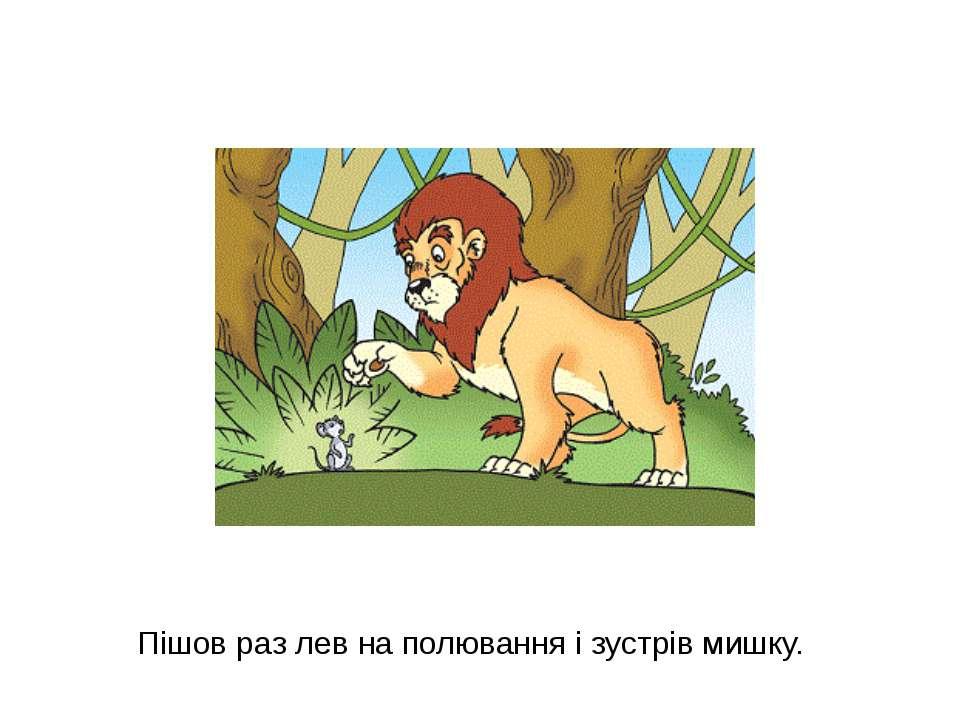 Пішов раз лев на полювання і зустрів мишку.