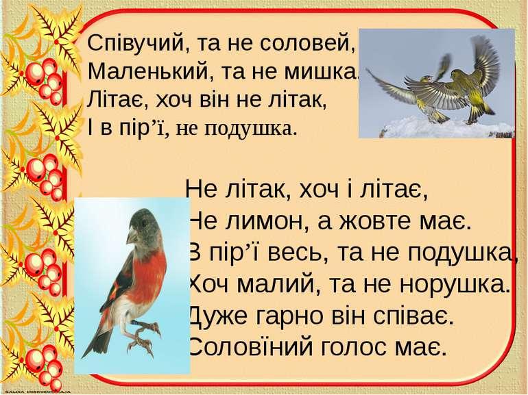 Співучий, та не соловей, Маленький, та не мишка. Літає, хоч він не літак, І в...