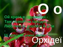 О о Орхідеї Ой краса в оранжереї - Там розквітли орхідеї. Люблять їх дорослі ...