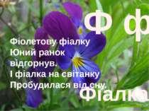 Ф ф Фіалка Фіолетову фіалку Юний ранок відгорнув. І фіалка на світанку Пробуд...