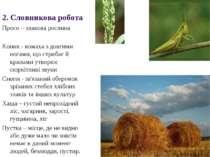 Просо – злакова рослина Коник - комаха з довгими ногами, що стрибає й крилами...