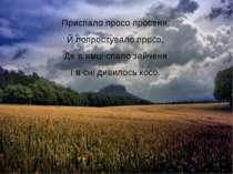 Приспало просо просеня, Й попростувало просо, Де в ямці спало зайченя І в сні...