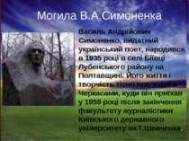 Василь Андрійович Симоненко, видатний український поет, народився в 1935 році...