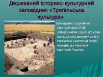 Державний історико-культурний заповідник «Трипільська культура» Заповідник є ...