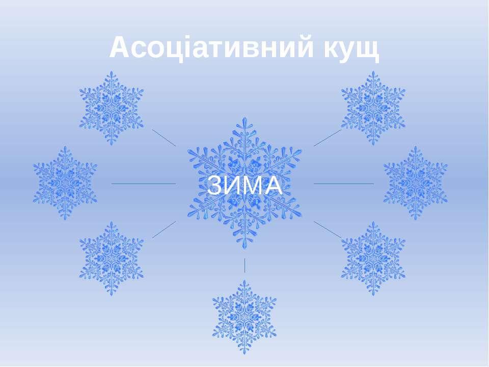 Асоціативний кущ ЗИМА