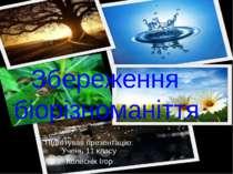 Збереження біорізноманіття Підготував презентацію: Учень 11 класу Колеснік Ігор