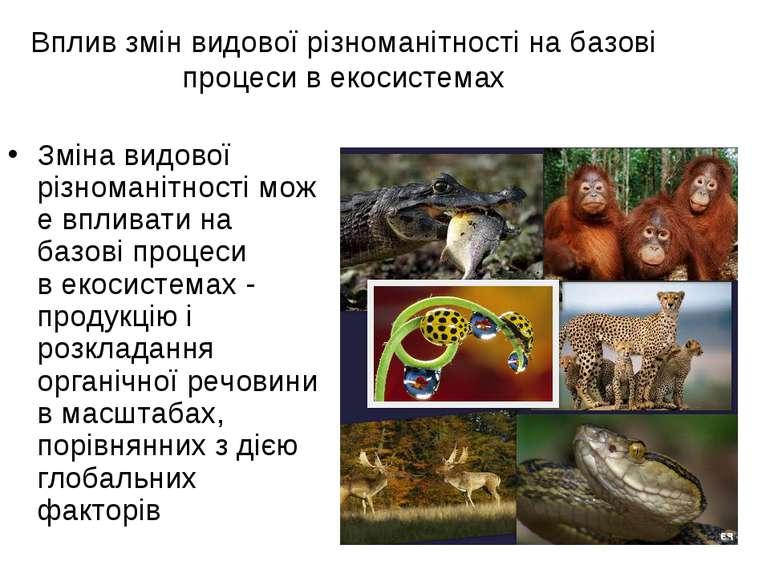 Вплив змін видової різноманітності на базові процеси в екосистемах Зміна видо...
