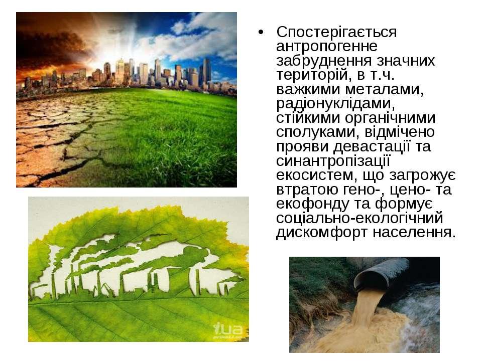 Спостерігається антропогенне забруднення значних територій, в т.ч. важкими ме...