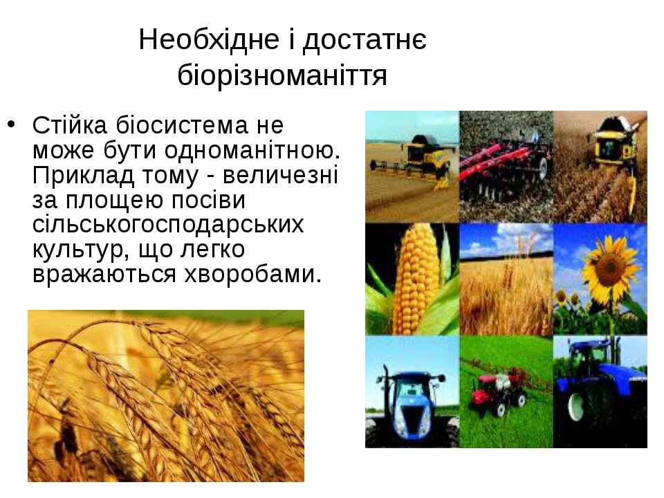 Необхідне і достатнє біорізноманіття Стійка біосистема не може бути одноманіт...