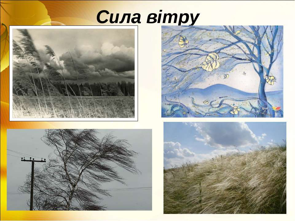 Сила вітру