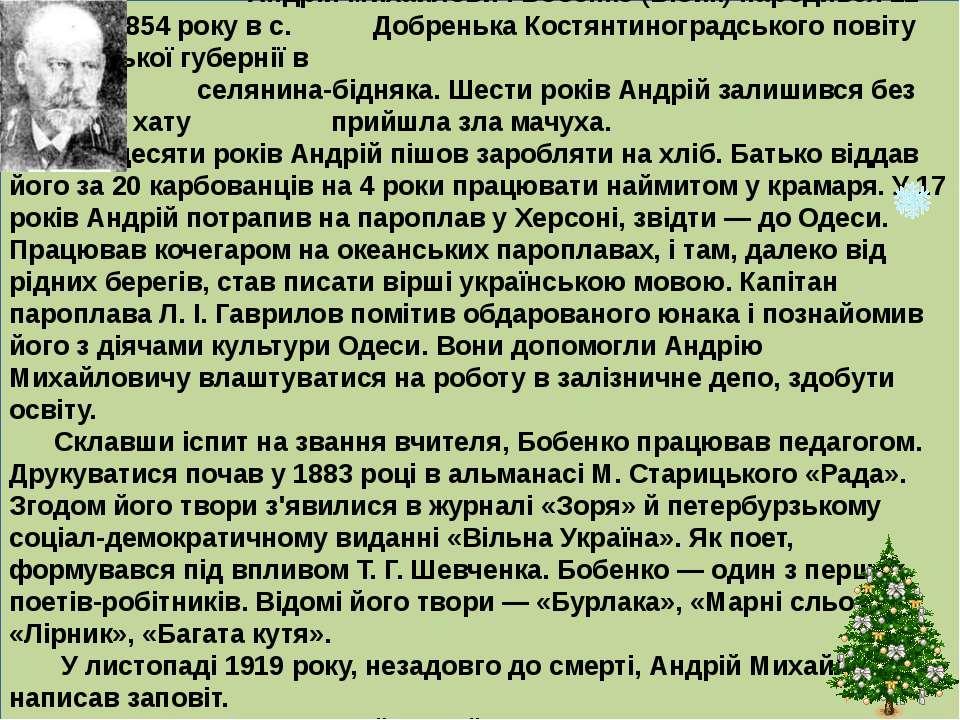 Андрій Михайлович Бобенко (Бібик) народився 12 серпня 1854 року в с. Добреньк...