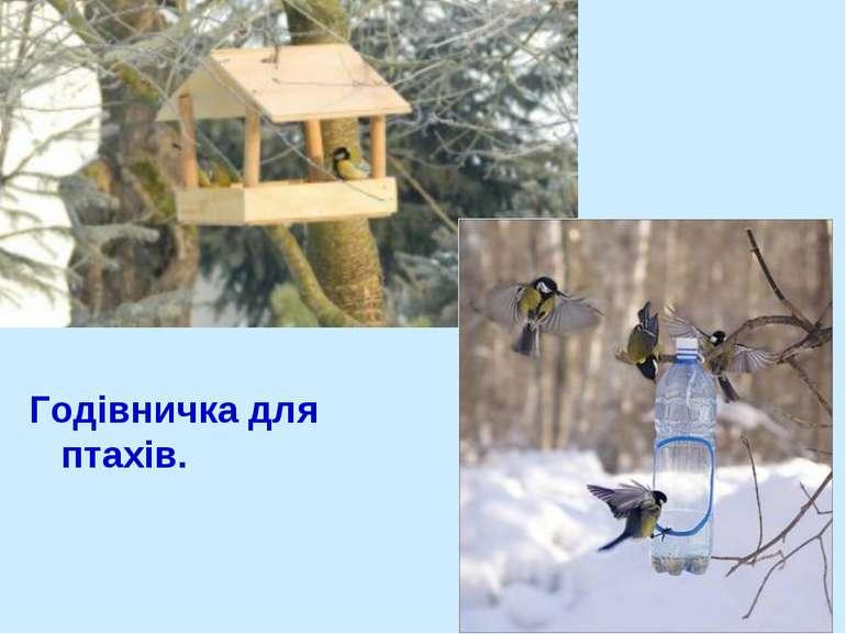 Годівничка для птахів.