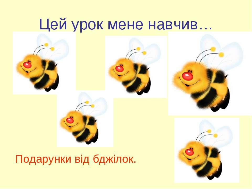 Цей урок мене навчив… Подарунки від бджілок.