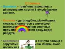 Словник Барвінок – трав'яниста рослина з вічнозеленим листям і голубуватими к...