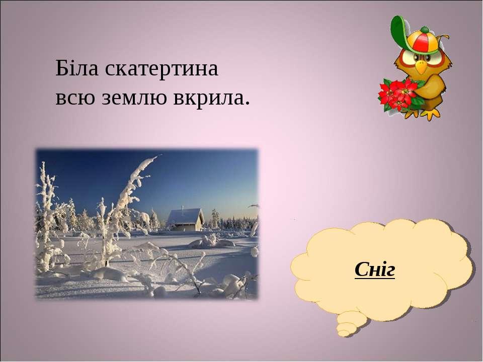 Біла скатертина всю землю вкрила. Сніг