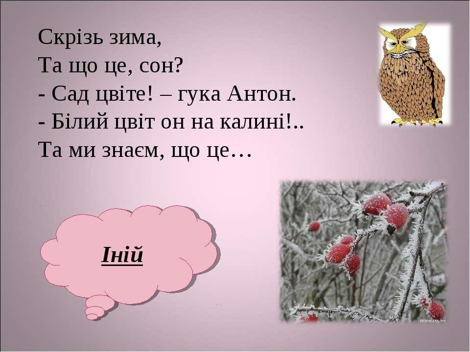 Скрізь зима, Та що це, сон? - Сад цвіте! – гука Антон. - Білий цвіт он на кал...