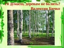 Ти думаєш, деревам не болить? Валентин Бичко