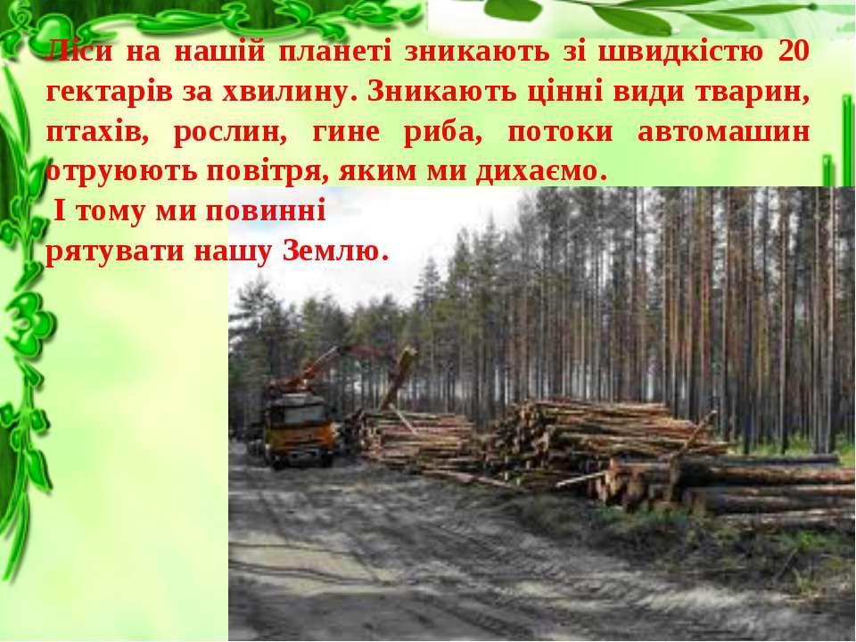Ліси на нашій планеті зникають зі швидкістю 20 гектарів за хвилину. Зникають ...